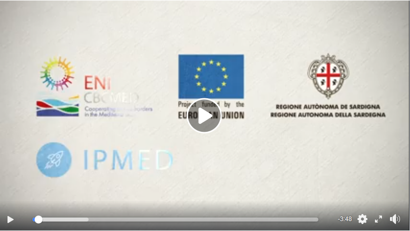 video-ipmed